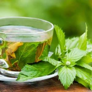 Zöld tea filteres