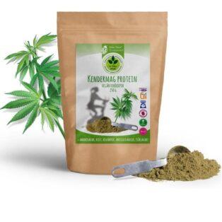 Dr. Natur étkek Kendermag protein - 250g