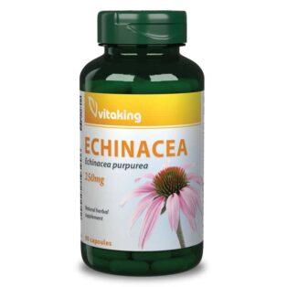 Vitaking Bíbor kasvirág - Echinacea kivonat kapszula - 90db